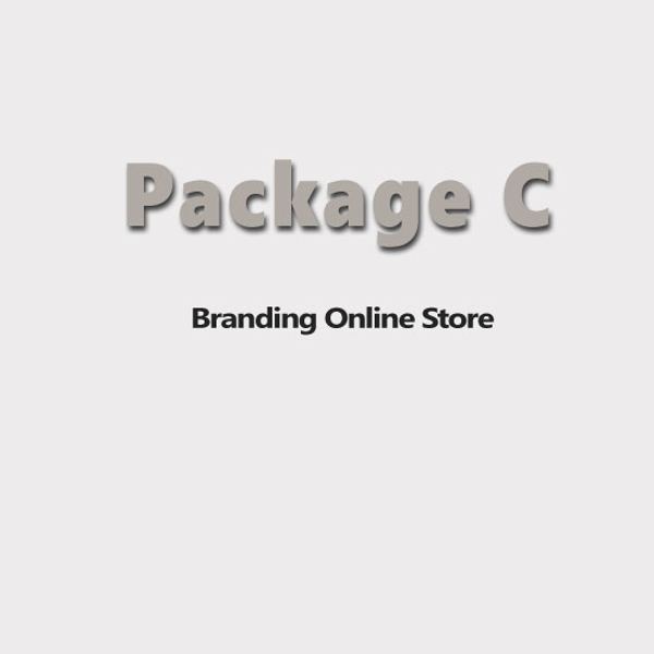 Picture of E-commerce Website-Professional Edition-Package C